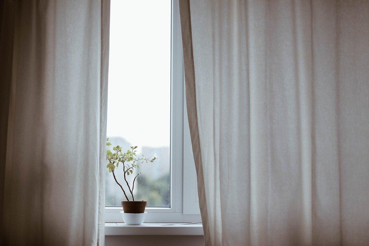 voilages qui laissent entrevoir une plante posée sur le rebord d'une fenêtre